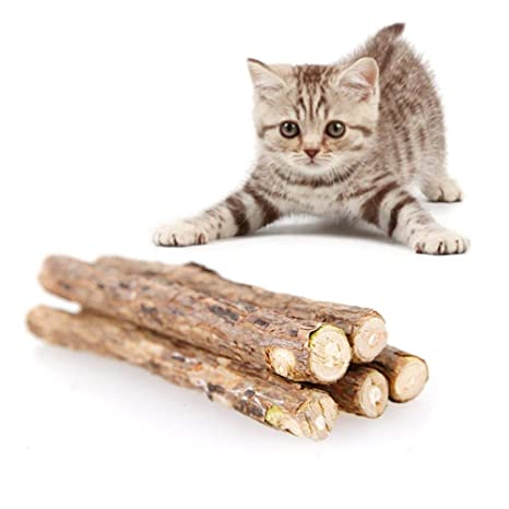 AITOCO 20 Palitos Catnip, Gatera De Matatabi para Gatos Natural Cuidado Dental Chew Catnip Sticks
