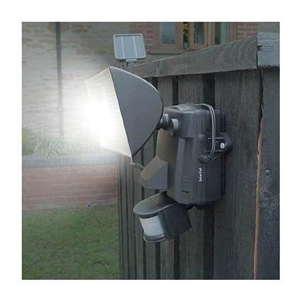 Amazon.com: Solar Luz de seguridad – Bombilla halógena de 30 ...