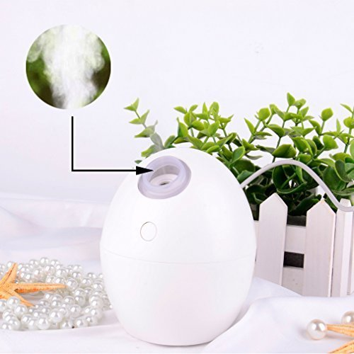 Ejotc Mini Portable 2 Color Mode Gift LED Light 160ML USB Cool Mist Humidifier for Room Office Desk Car (Natural Vaporizer Juice)