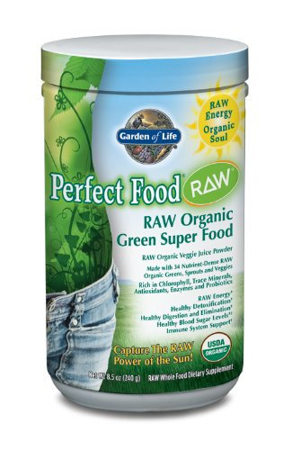 Garden of Life Perfect Food Raw Organic poudre Supplément nutritionnel, 240 grammes