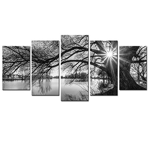 5 Pieces Wall Art,Old Tree by Lake Picture Canvas Prints Sun