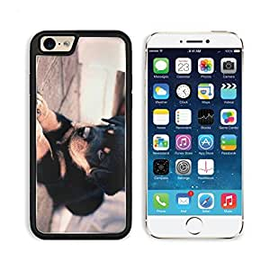 Puppy Rottweiler Pup Dog Pets Animal Apple iPhone 6 TPU Snap Cover Premium Aluminium Design Back Plate Case Customized Made to Order Support Ready Liil iPhone_6 Professional Case Touch Accessories Graphic Covers Designed Model Sleeve HD Template Wallpaper