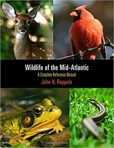 Book Wildlife of the Mid-Atlantic: A Complete Reference Manual by John H. Rappole (2012-02-06)