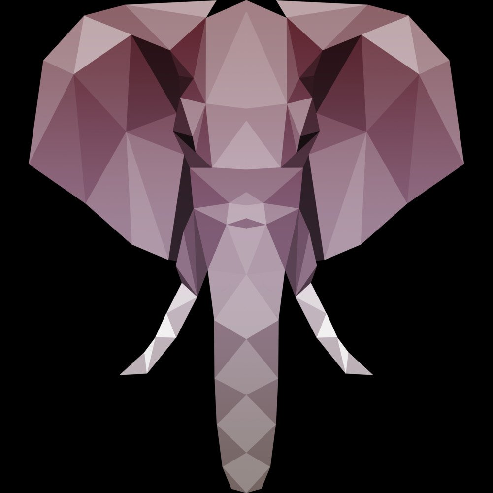 Geo Elephant Girls Youth Graphic T Shirt Design By Humans