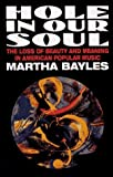 img - for Hole in Our Soul - book / textbook / text book