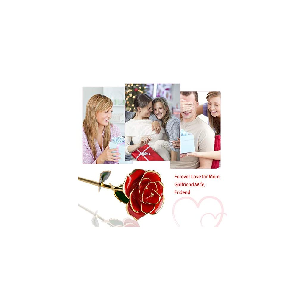 24K-Gold-Rose-FlowerGold-Foil-Artificial-Forever-Rose-with-Transparent-Stand-Gift-BoxBest-Romantic-Present-Ideal-for-Her-on-Valentines-Day-Mothers-Day-Anniversary-Birthday-ChristmasDecoration