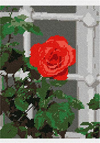 (pepita Open Rose by The Window Needlepoint Canvas)