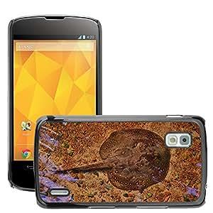 Etui Housse Coque de Protection Cover Rigide pour // M00117183 Ray Stingray Fish Mar Océano // LG Nexus 4 E960