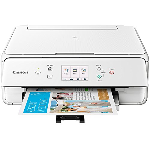 Canon PIXMA TS6120 Wireless All-in-One Compact Printer with Scanner & Copier White (2229C022) Corel Paint Shop Pro X9 Digital Download & High Speed 6-Foot USB Printer Cable by Canon (Image #3)