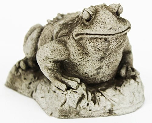 Cement Garden Sculpture - Toad Concrete Garden Statue Cement Frog Sculpture Cast Stone Frogs Figurines