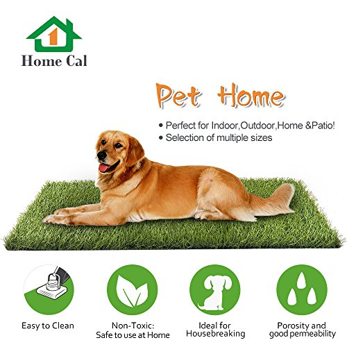 Home Cal Artificial Grass Rug Series Landscape Indoor/Outdoor Decorative Synthetic Turf Pet Dog Area 3cm Autumn Grass 3'x5'