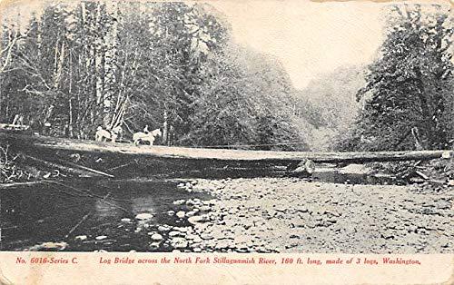 Logging Post Card Log Bridge North Fork Stillaguamish River, WA, USA Postcard 1909