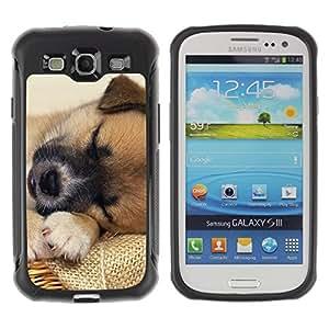 Suave TPU Caso Carcasa de Caucho Funda para Samsung Galaxy S3 I9300 / Tibetan Spaniel Mutt Mongrel Dog / STRONG