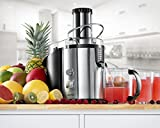 Gourmia GJ1250 Wide Mouth Fruit Centrifugal Juicer - Juice Extractor with Multiple Settings 32 oz - Stainless Steel - ETL -1000 Watts