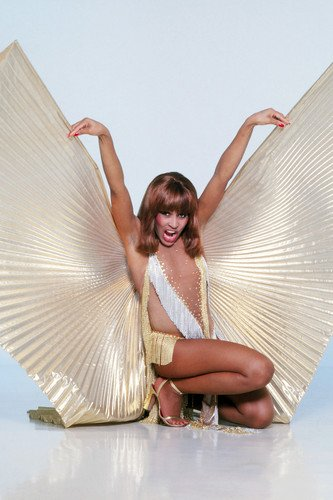 [Tina Turner Stunning With Gold Angel Wings Revealing Costume 24X36 Poster] (Revealing Costumes)