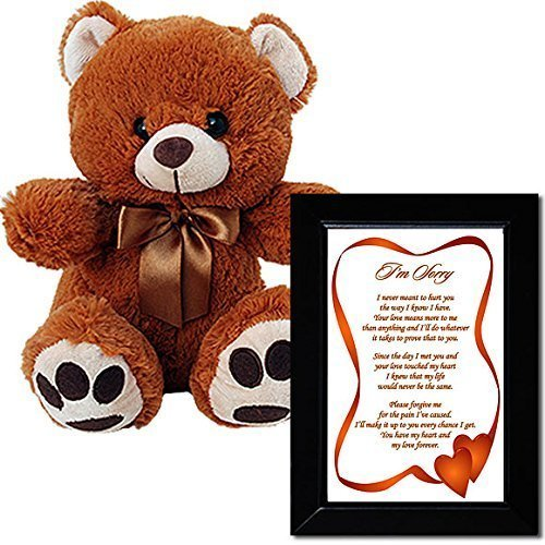 I'm Sorry Love Poem and Plush Teddy Bear - Sorry Gift for...