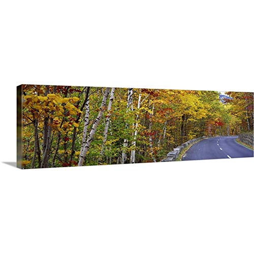 (GREATBIGCANVAS Gallery-Wrapped Canvas Entitled Park Loop Road Acadia National Park ME by 48