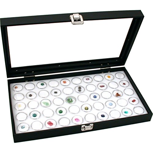 display case for state quarters - 7