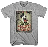 disney world tickets orlando - Disney Mickey Mouse Technicolor Movie Disneyland World Funny Humor Pun Mens Adult Graphic Tee T-Shirt (Heather Grey, Small)