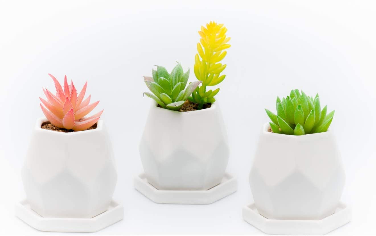 Succulent Planter Pots – Mini Ceramic Containers Flower Planter Pot Container, Cactus Planter, with Drainage Hole, Set of 3pc White Geometric.