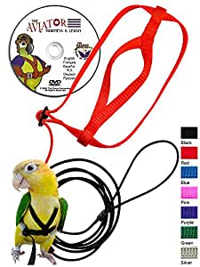 The AVIATOR Pet Bird Harness and Leash: Small Silver