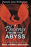 A Phoenix from the Abyss: A Life Such as This: Black and White Illustrations