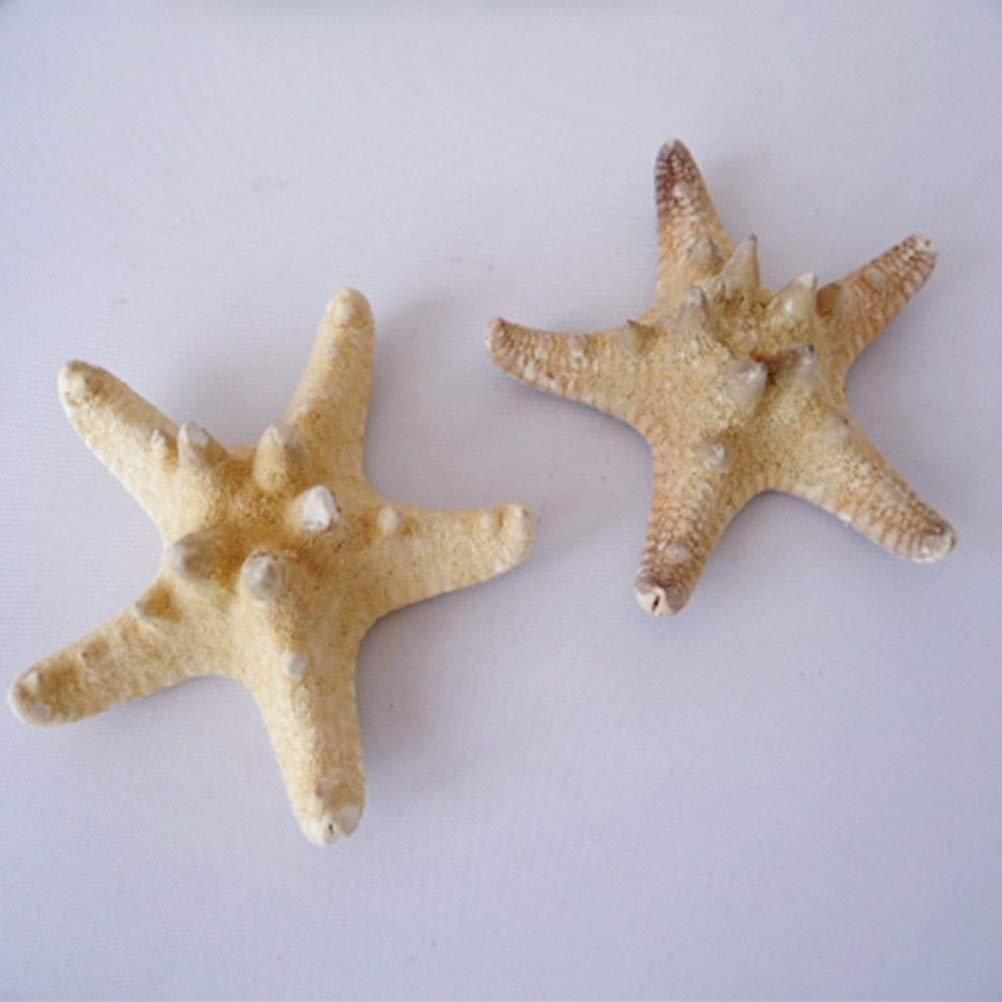 5-8cm Amosfun 4pcs Estrellas de mar Naturales para Manualidades Shell Conch Wall Decoraci/ón de Jardines Decoraci/ón de Bodas para acuarios