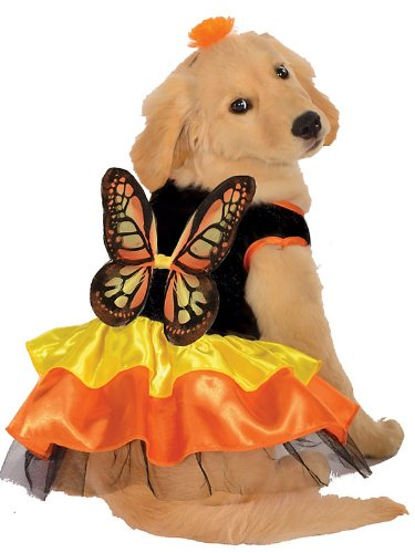 Monarch Butterfly Pet Pet Costume - Medium ()