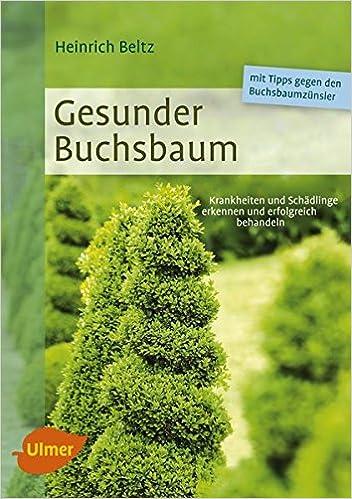 Fabelhaft Gesunder Buchsbaum: Krankheiten und Schädlinge erkennen und #LD_42