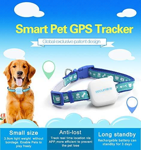 Barry Century Pet GPS Tracker - Collar para localizador de Perros y Gatos, diseño de Animales: Amazon.es: Productos para mascotas