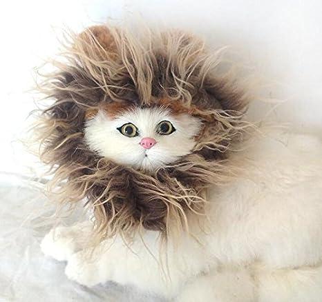 Xinjiener Suéteres de Perro Perro Gato Divertido Cabeza de León Peluca Accesorios Suministros Decoración para Mascotas Marrón Pelusa: Amazon.es: Productos ...