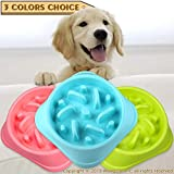 wangstar Pet Slow Feeder Bowl, Bloat Stop Dog Puzzle Bowl Maze, Interactive Fun Feeder Slow Bowl with Anti-Skid Design (bluex1)