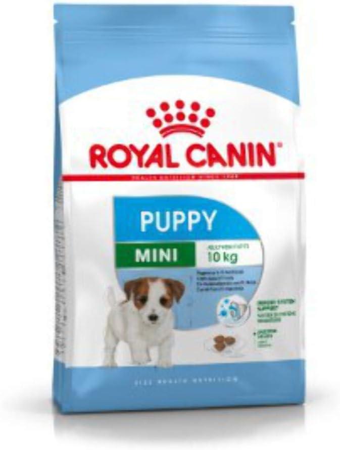 Royal canin mini junior pienso perros raza pequeña