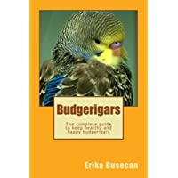 Budgerigars: The complete guide to keep healthy and happy budgerigars