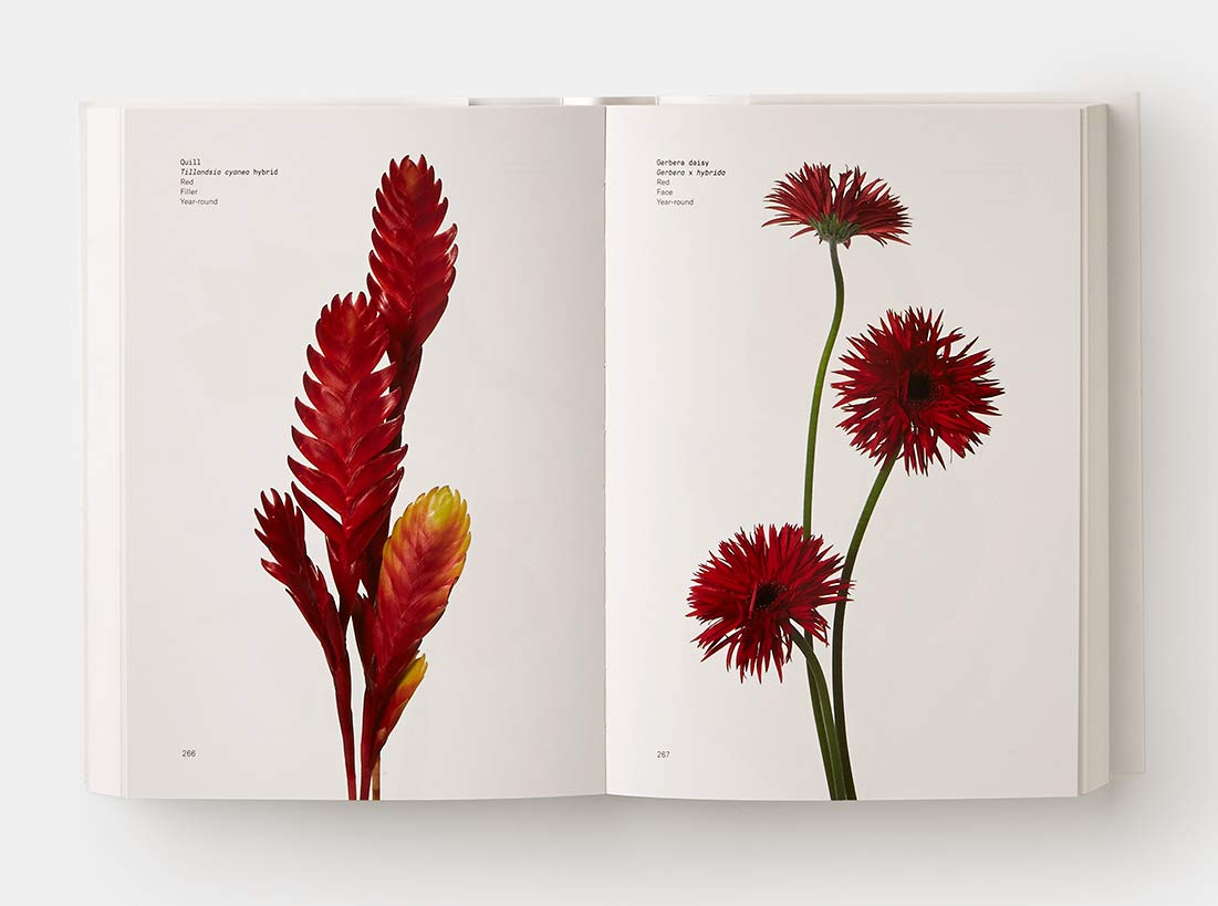 Flower Color Guide: Darroch Putnam, Michael Putnam