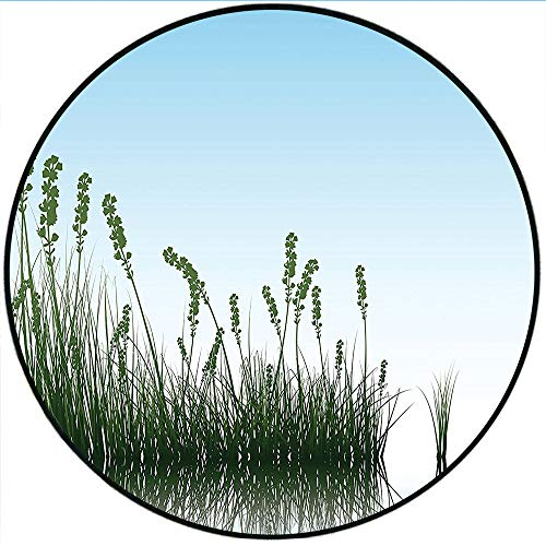 Short Plush Short Plush Round Rugs Landscape Scenery of a Lake Bushes Grass with Reflection Floral Art Image Light Blue Jade Green Microfiber Non-Slip Absorbent 63