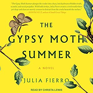 The Gypsy Moth Summer Audiobook