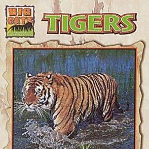 (Tigers (Big Cats))