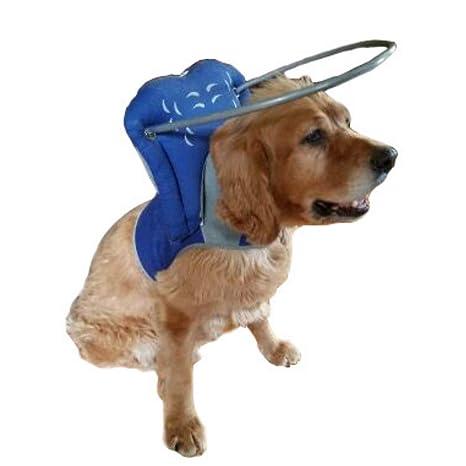 Muffins Halo Guide - Guía para Perros, Talla 1XL, Color Azul ...