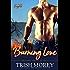 Burning Love (Hot Aussie Knights Book 4)