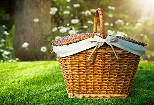 Baocicco Backdrop 10x6.5ft Picnic Vinyl Photo Background Basket Natural Scenery Outdoor Activity Lawn Blossom Photo Booth Props Backdrops for Children Holiday Vacation Celebration Photography
