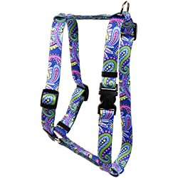 Yellow Dog Design Paisley Power Roman Style H Dog Harness, Small/Medium-3/4 Wide fits Chest of 14 to 20""
