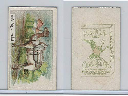 igarettes, Animals & Birds, 1912, 4 Camel ()