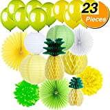 BBTO Tissue Paper Honeycomb Pineapples Paper Lanterns with Colorful Paper Fans Pom Poms Flower Honeycomb Balls and Balloons for Summer Luau Party, 23 Pieces
