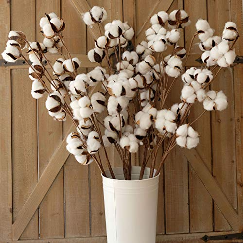 idyllic Pack of 6 Cotton Stems - 31