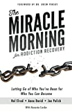 Product review for The Miracle Morning for Addiction Recovery: Letting Go of Who You've Been for Who You Can Become (Volume 12)