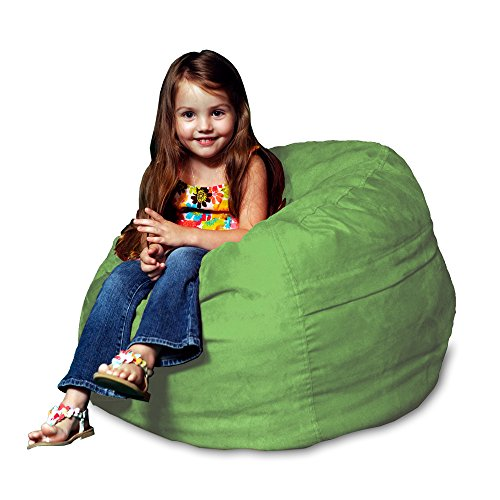Chill Sack Bean Bag Chair: Large 2' Memory Foam Furniture Bean Bag - Big Sofa with Soft Micro Fiber Cover - Lime by Chill Sack