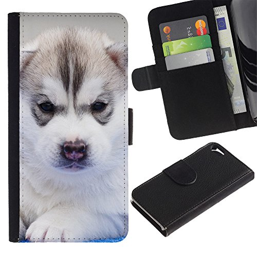 OMEGA Case / Apple Iphone 5 / 5S / Siberian husky Alaskan malamute puppy / Cuir PU Portefeuille Coverture Shell Armure Coque Coq Cas Etui Housse Case Cover Wallet Credit Card