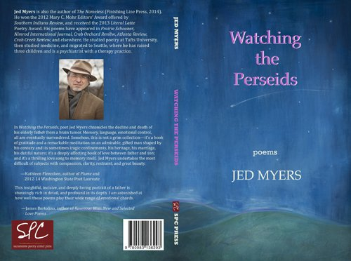 Watching the Perseids