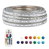 LED Strip Light Remote Controller RGB Waterproof Rope Light Flexible Multi-color Change Landscape Light for Party Holiday Home Decoration 5050 SMD 60 LEDs/M AD 110V 50 Ft